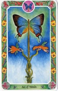 KC - ASTROLOGY: Tarot Cards Meanings - Suit Of Wands