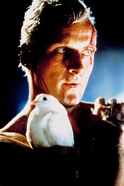 Movies: Blade Runner: 30 stunning pictures